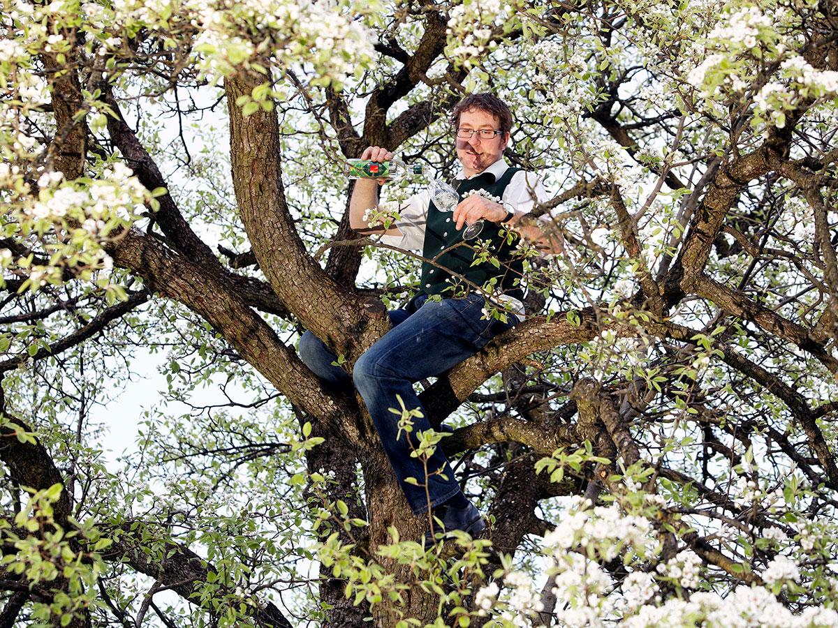 Chef im Apfelbaum