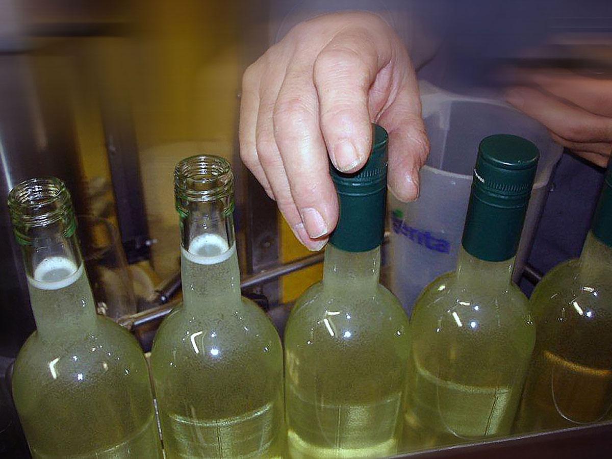 Caldera Flaschen Produktion