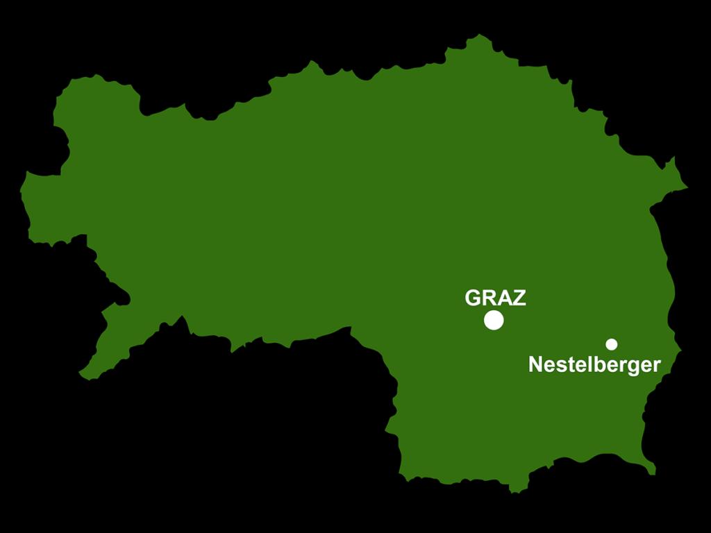 Steiermark Karte Graz Nestelberger